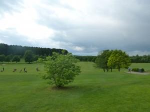 Natürliche Driving Range im GolfClub Starnberg