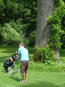 Golfen im alten Schlosspark Maxlrain